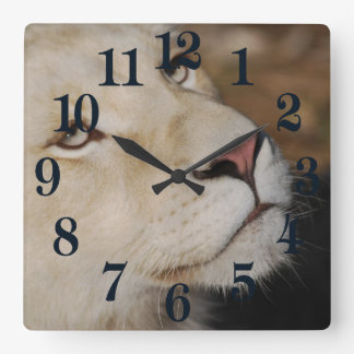 A gentle lion face South Africa Square Wall Clock