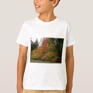 A Gentle Wind in Wildwood T-Shirt