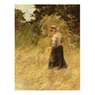 A Girl Harvesting Hay, 19th century Postcard