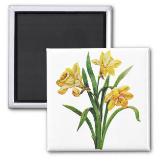 A Golden Host of Embroidered Daffodils Magnet
