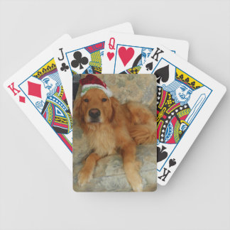A Golden Retriever at Christmas with Santa Hat Bicycle Playing Cards