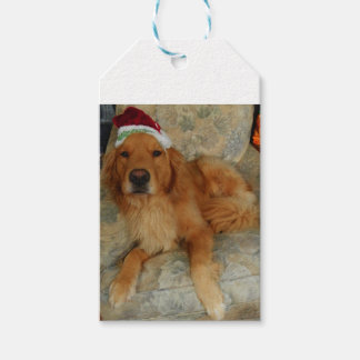 A Golden Retriever at Christmas with Santa Hat Gift Tags