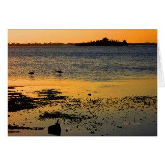 """""""A Golden Sunset"""" in Dunedin, Florida Card"""