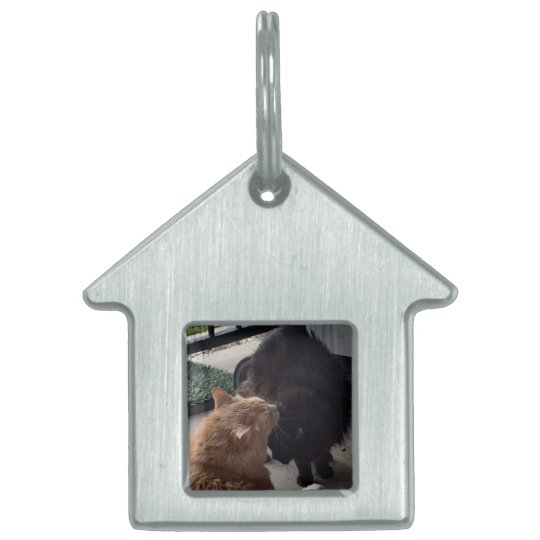 A great gift - a House Tag/Key chain for your cats Pet Name Tag
