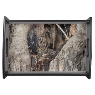 A Great Horned Owl blending in Serving Tray