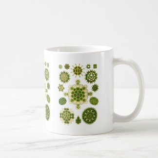 A Green Algae Coffee Mug