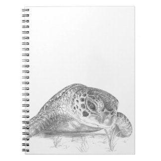 A Green Sea Turtle in Grayscale Notebook
