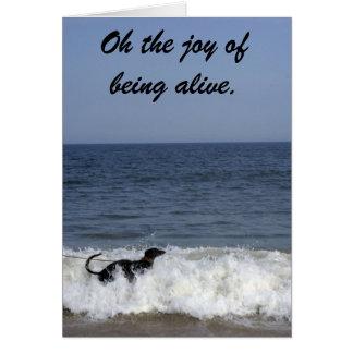 A greyhound enjoying the surf . card