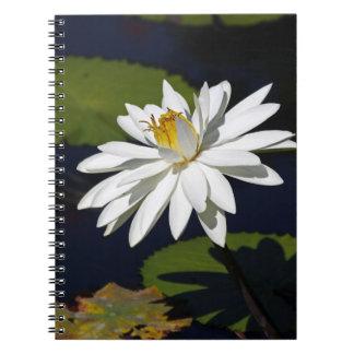 A Groovy Kinda Love Notebook