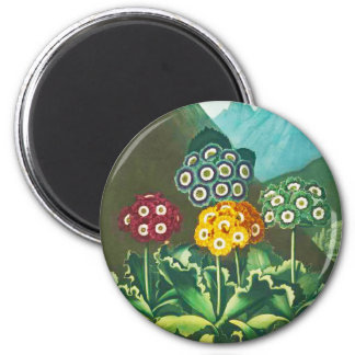 A Group of Auriculas 2 Inch Round Magnet