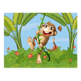 A hanging monkey postcard
