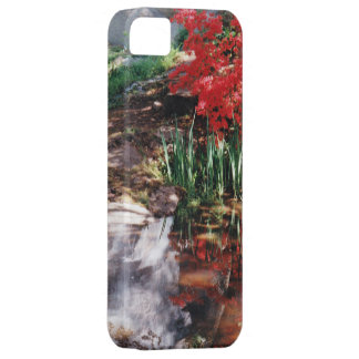 A Healing Place Case For The iPhone 5