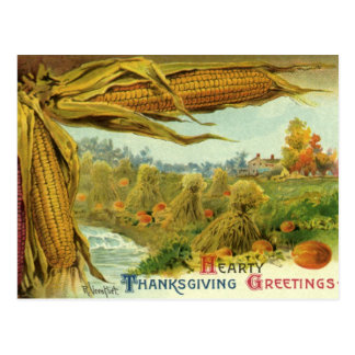 A Hearty Thanksgiving; Indian Corn and Haystacks Postcard