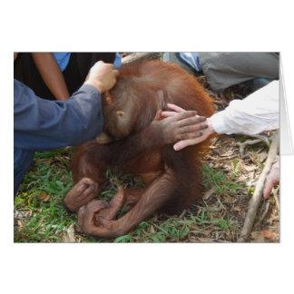 A Helping Hand for Orangutans Card