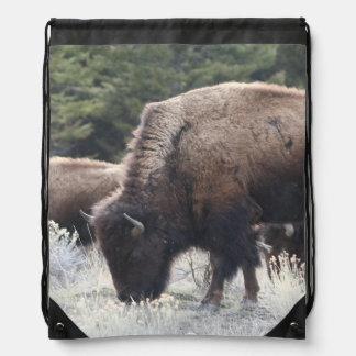 A Herd of Brown Bison Graze in a grassy Meadow Backpacks
