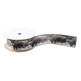 A Herd of Brown Bison Graze in a grassy Meadow Satin Ribbon
