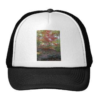 A Hint of Red Velvet Trucker Hat