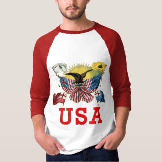 A History of American Flags on a Tshirt