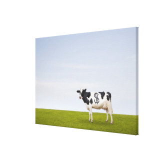 A Holstein Dairy cow with spots in the shape of Canvas Prints