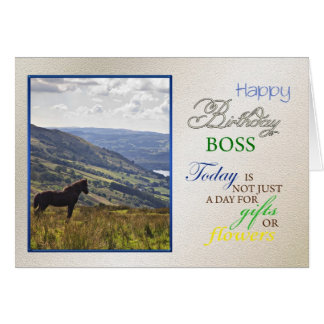 A horse birthday card for boss.