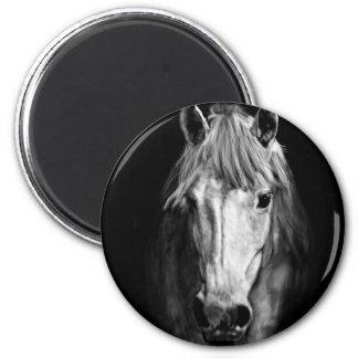 A Horse Called Elvis 2 Inch Round Magnet