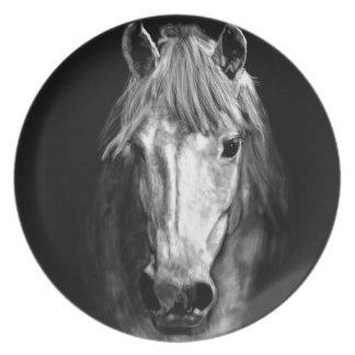 A Horse Called Elvis Dinner Plates