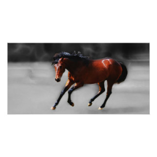 A horse called Riboking Personalized Photo Card