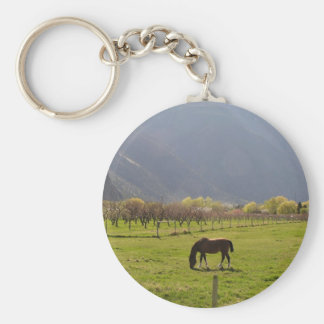 A horse in a valley pasture basic round button keychain