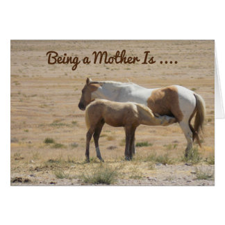 A Horse Mothering Her Baby Happy Mother's Day Card