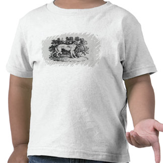 A Hound from 'History of Quadrupeds' Tshirt