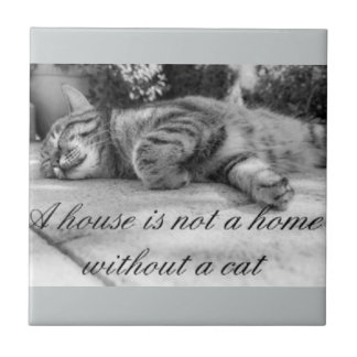 A house is not a home without a cat tile. tile