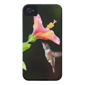 A hummingbird BlackBerry Bold 9700 hard case iPhone 4 Case