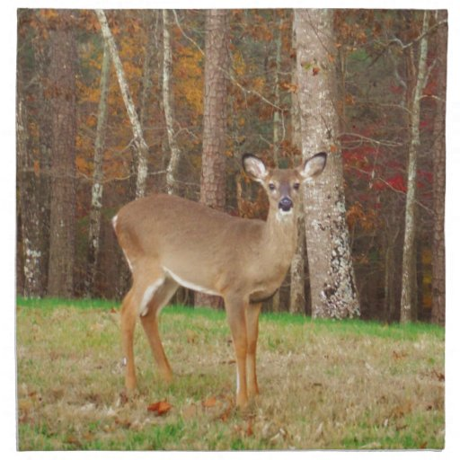 A Hunter's Dream Deer Cloth Napkins