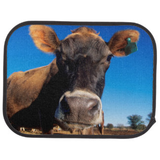 A Jersey cow being inquisitive Car Mat
