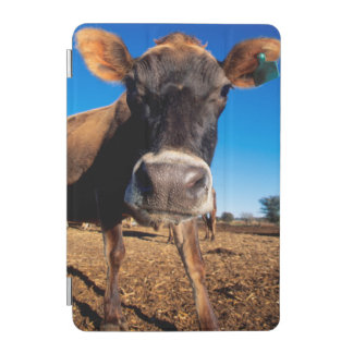 A Jersey cow being inquisitive iPad Mini Cover