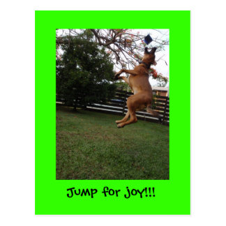 A jump for joy!! postcard
