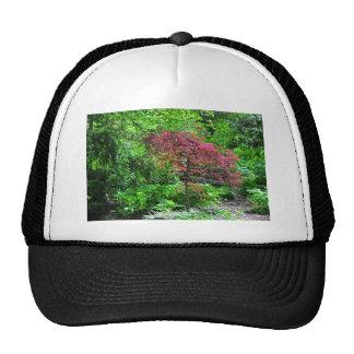 A Kingdom of Dreams Trucker Hat