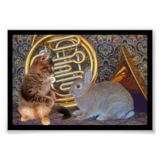 A Kitten, a Bunny and a French Horn Poster
