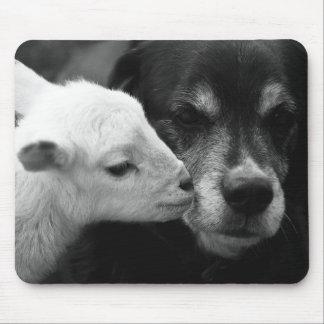 A Lamb's Kiss Mouse Pad