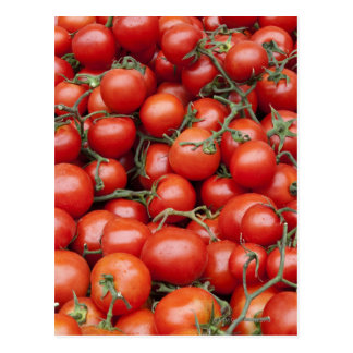 A large crop of tomato on a market stall in postcard