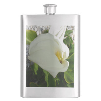 A Large Single White Calla Lily Flower Hip Flask