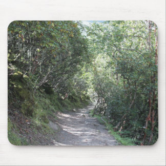A leafy walk through beautiful scenery mouse pad