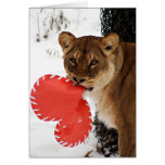 A Lion Share of  Love Greeting Cards