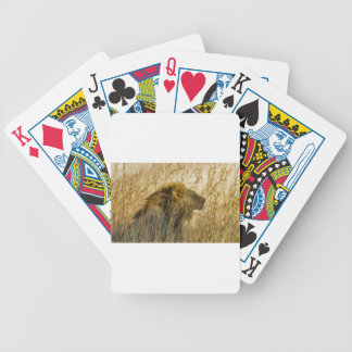 A Lion Waits, Zimbabwe Africa Bicycle Playing Cards