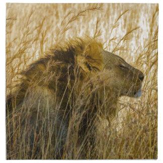 A Lion Waits, Zimbabwe Africa Napkin