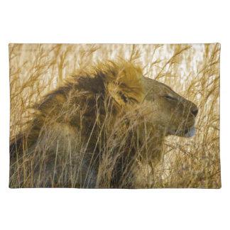 A Lion Waits, Zimbabwe Africa Placemat