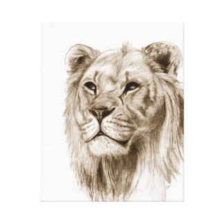 A Lion - Without Pride, Drawing, Sketch Art Canvas Print