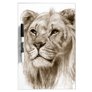 A Lion - Without Pride Drawing Sketch Art Dry-Erase Whiteboard