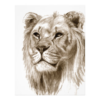A Lion - Without Pride Drawing Sketch Art Letterhead