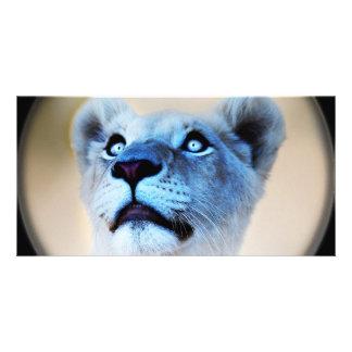 A lions surprise photo card template